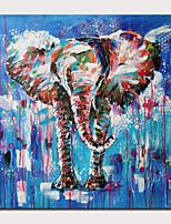 Недорогие -Hang-роспись маслом Ручная роспись - Абстракция Животные Современный Modern Включите внутренний каркас