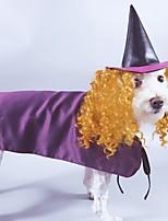 Недорогие -Собаки Коты Животные Костюмы Комбинезоны Волшебная Шляпа Одежда для собак Однотонный Лиловый Полиэстер Костюм Назначение Зима Хэллоуин