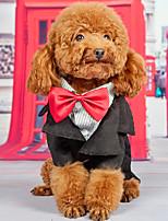 Недорогие -Собаки Инвентарь Одежда для собак Однотонный Черный Полиэстер Костюм Назначение Весна & осень Свадьба