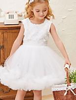 Недорогие -Дети (1-4 лет) Девочки Классический Цветочный принт Без рукавов До колена Платье Белый