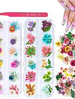 Недорогие -2 коробочки сухоцветов для нейл-арта кисбуты 24 цвета сухоцветов мини-натуральные живые цветы товары для ногтей (листья гипсофила)