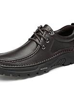 Недорогие -Муж. Кожаные ботинки Наппа Leather Весна лето / Наступила зима На каждый день / Английский Туфли на шнуровке Нескользкий Черный / Коричневый