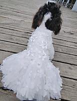 Недорогие -Собаки Коты Животные Платья Одежда для собак Цветочные / ботанический Тонкая прозрачная ткань Белый Полиэстер Костюм Назначение Лето Свадьба