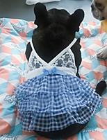 Недорогие -Собаки Коты Животные Платья Одежда для собак Кружева Синий Полиэстер Костюм Назначение Лето Юбки и платья