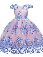 Недорогие -Дети Девочки Активный Милая Цветочный принт Вышивка С короткими рукавами До колена Платье Розовый