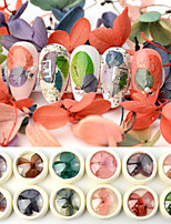 cheap -12 pcs Universal / New Design Dried Flower Decals For Finger Nail Flower Series Petal nail art Manicure Pedicure Daily Korean / Colorful