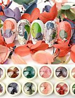 abordables -12 pcs Universel / Design nouveau Fleur séchée Décalques Pour Ongle de Doigt Séries de fleur Pétale Manucure Manucure pédicure Quotidien Coréen / Coloré