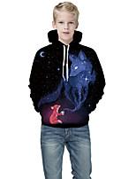 cheap -Kids Boys' Basic Color Block 3D Print Long Sleeve Hoodie & Sweatshirt Black