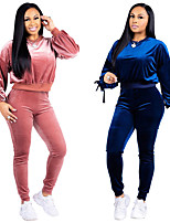 cheap -Women's 2-Piece Velour Tracksuit Sweatsuit 2pcs Running Fitness Jogging Sportswear Windproof Breathable Soft Athletic Clothing Set Long Sleeve Activewear Micro-elastic Regular Fit