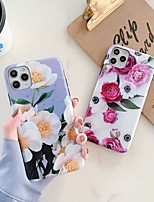 cheap -Case For Apple iPhone 11 / iPhone 11 Pro / iPhone 11 Pro Max Shockproof / IMD Back Cover Flower TPU