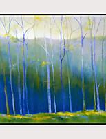 cheap -Framed Art Print Framed Set - Landscape Floral / Botanical PS Oil Painting Wall Art