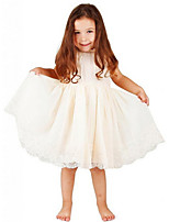cheap -Toddler Girls' Solid Colored Sleeveless Above Knee Dress White