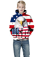 cheap -Kids Boys' Active Punk & Gothic Color Block 3D Flag Long Sleeve Hoodie & Sweatshirt Blue
