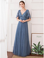 cheap -A-Line V Neck Floor Length Tulle Elegant / Blue Formal Evening / Party Wear Dress 2020 with Appliques