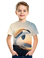 cheap -Kids Boys' Active Street chic 3D Print Short Sleeve Tee Rainbow