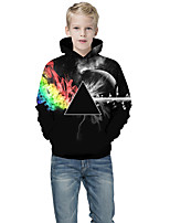 cheap -Kids Boys' Active Punk & Gothic Geometric Color Block 3D Long Sleeve Hoodie & Sweatshirt Black