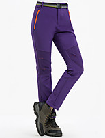 cheap -Women's Hiking Pants Softshell Pants Winter Outdoor Windproof Breathable Warm Pants / Trousers Bottoms Camping / Hiking / Caving Traveling Winter Sports Black Purple Fuchsia S M L XL XXL Regular Fit