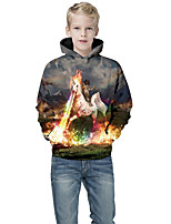 cheap -Kids Boys' Active Punk & Gothic Print Color Block 3D Long Sleeve Hoodie & Sweatshirt Rainbow