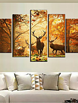cheap -5 Panels Modern Canvas Prints Painting Home Decor Artwork Pictures DecorPrint Rolled Stretched Modern Art Prints Animals Abstract