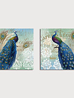cheap -Print Canvas Painting Blue Peacocks Art Prints set of 2 with Stretcher Home Decration