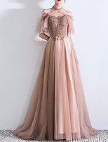 cheap -A-Line Off Shoulder Sweep / Brush Train Tulle Sparkle / Pink Prom / Formal Evening Dress with Beading / Sequin 2020