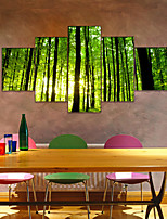 cheap -AMJ Hot Sale Forest Morning Pentagram Living Room Sofa Background Wall Decoration Canvas Picture Frameless Core