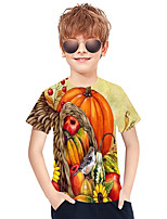 cheap -Kids Boys' Active Punk & Gothic 3D Plaid Fruit Short Sleeve Tee Rainbow