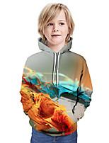 Недорогие -Дети Мальчики Активный Классический Контрастных цветов 3D Длинный рукав Худи / толстовка Цвет радуги