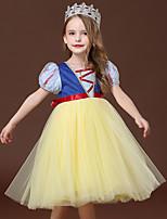 cheap -Princess Dress Girls' Movie Cosplay Cosplay Halloween Blue Dress Halloween Carnival Masquerade Tulle Polyester