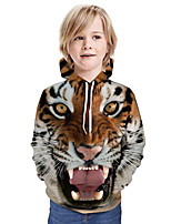 cheap -Kids Boys' Active Street chic 3D Patchwork Animal Print Long Sleeve Hoodie & Sweatshirt Rainbow