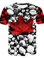 cheap -Kids Boys' Basic Street chic Tropical Leaf Geometric Color Block 3D Print Short Sleeve Tee Rainbow