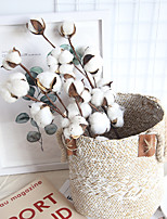 cheap -Real Cotton Branch Home Decoration Wedding Plant INS Air-Dry Flower Wedding Wall