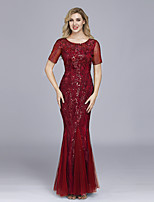 cheap -Mermaid / Trumpet Elegant Empire Prom Formal Evening Dress Jewel Neck Short Sleeve Floor Length Tulle with Embroidery 2020