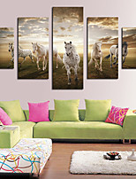cheap -5 Panels Modern Canvas Prints Painting Home Decor Artwork Pictures DecorPrint Rolled Stretched Modern Art Prints Landscape Animals