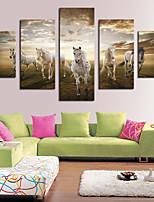cheap -5 Panels Modern Canvas Prints Painting Home Decor Artwork Pictures DecorPrint Rolled Stretched Modern Art Prints Landscape Animals