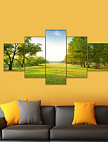 cheap -AMJ Hot Scenery Five-frame Painting Living Room Sofa Background Wall Decoration Canvas Picture Frameless Core