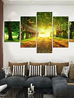 cheap -5 Panels Modern Canvas Prints Painting Home Decor Artwork Pictures DecorPrint Rolled Stretched Modern Art Prints Landscape Botanical