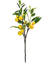 cheap -1 Piece Artificial Lemon Fruit Branch Display Living Room Simulation Plants Decor