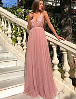 cheap -A-Line Empire Pink Prom Formal Evening Dress Spaghetti Strap Sleeveless Sweep / Brush Train Lace with Sequin 2020
