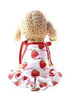 Недорогие -Собаки Платья Одежда для собак Красный Костюм Хаски золотистого ретривера далматина Сетка Фрукты Лозунг На каждый день Симпатичные Стиль XS S M L XL XXL