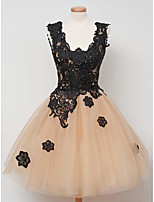 cheap -Ball Gown Luxurious Pink Homecoming Cocktail Party Dress Scoop Neck Sleeveless Knee Length Tulle with Appliques 2020