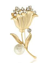 Недорогие -женский цирконий броши классический фруктовый стильный простой классический брошь ювелирные изделия золотой розовый красный для вечеринки подарок повседневная работа фестиваль