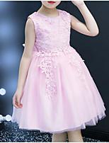 Недорогие -Дети Девочки Цветы Симпатичные Стиль Цветочный принт Однотонный Кружева Вышивка Без рукавов До колена Платье Розовый