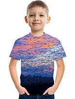 cheap -Kids Boys' Active Street chic Color Block 3D Print Short Sleeve Tee Rainbow
