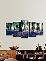 cheap -Print Rolled Canvas Prints Stretched Canvas Prints - Botanical Floral / Botanical Vintage Modern Art Prints