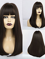 cheap -Synthetic Wig Matte Natural Straight Neat Bang Wig Long sepia Synthetic Hair 20 inch Women's Middle Part Waterfall Dark Brown