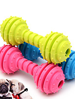 cheap -Chew Toy Dog Cat Pet Toy Focus Toy Rubber Gift
