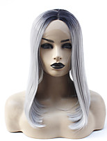 cheap -Synthetic Lace Front Wig Straight Jenifer Middle Part Lace Front Wig Ombre Medium Length Ombre Grey Synthetic Hair 14-16 inch Women's Heat Resistant Women Hot Sale Gray Ombre / Glueless