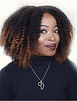 cheap -Synthetic Wig Curly Middle Part Wig Short Black / Brown Synthetic Hair 12 inch Women's Simple Women Adorable Light Brown