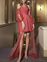 cheap -A-Line Cut Out Sexy Homecoming Cocktail Party Dress Jewel Neck Long Sleeve Asymmetrical Tulle with Pleats 2020